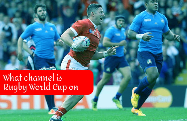 channel rugby world cup